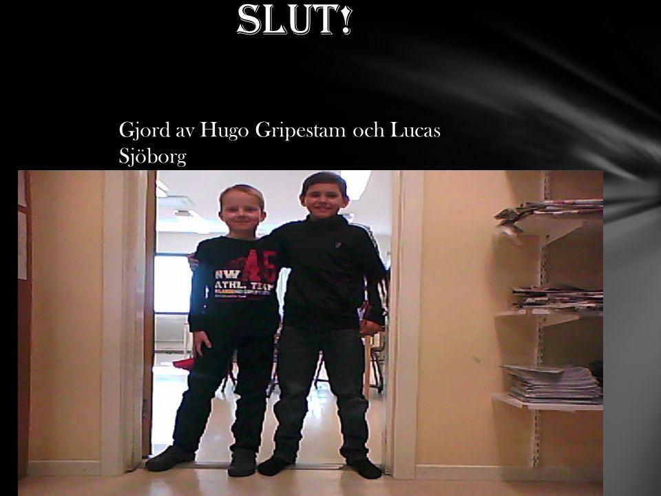 Slut! Gjord av Hugo Gripestam och Lucas Sjöborg