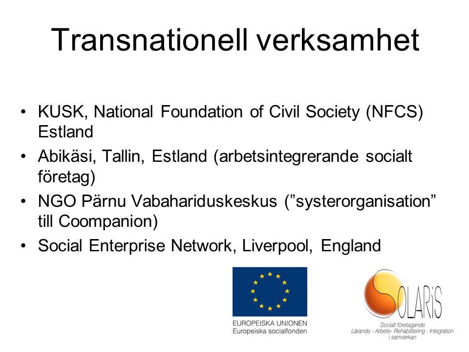 Transnationell verksamhet