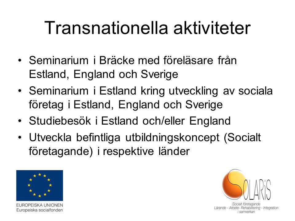 Transnationella aktiviteter