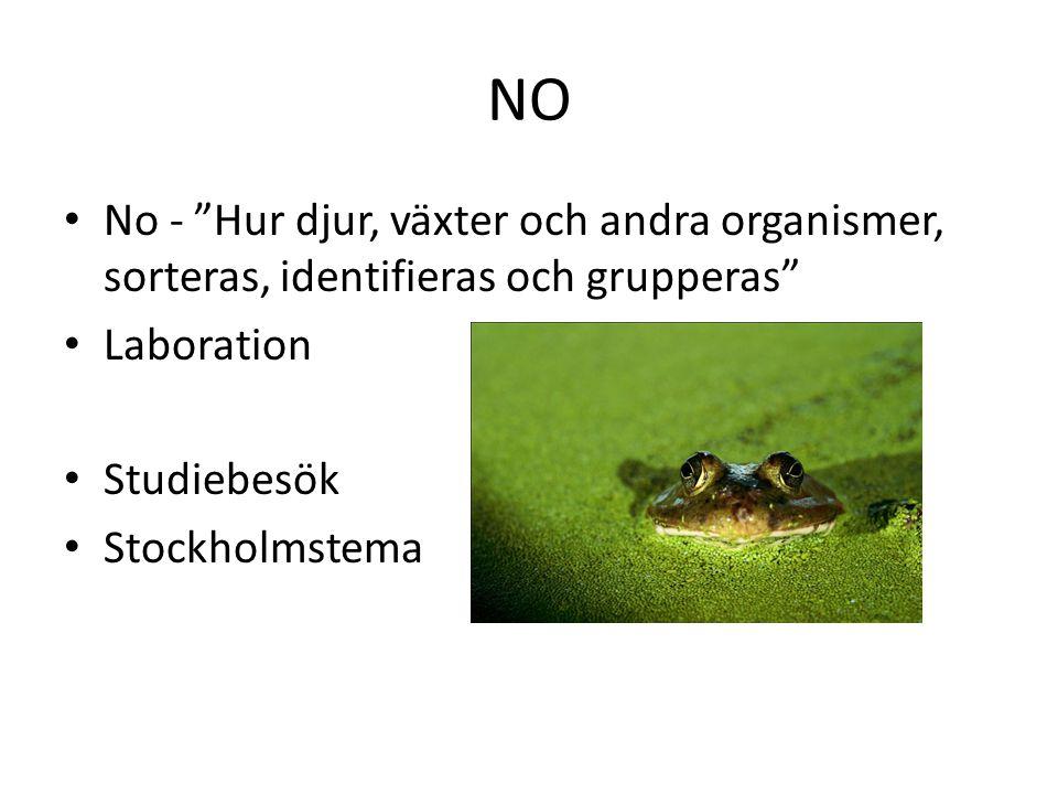 NO No - Hur djur, växter och andra organismer, sorteras, identifieras och grupperas Laboration. Studiebesök.