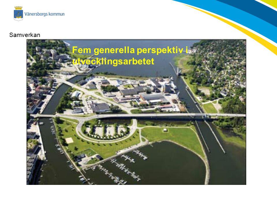 Fem generella perspektiv i utvecklingsarbetet