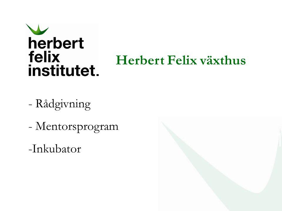 Herbert Felix växthus Rådgivning Mentorsprogram Inkubator