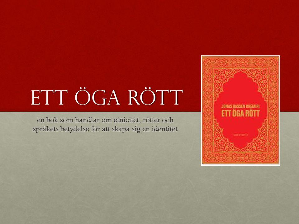 Ett öga rött en bok som handlar om etnicitet, rötter och språkets betydelse för att skapa sig en identitet.