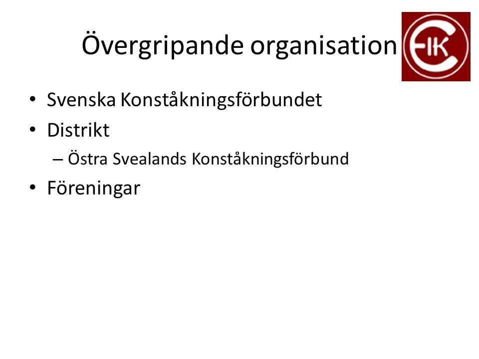 Övergripande organisation