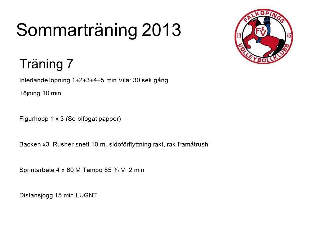 Sommarträning 2013 Träning 7