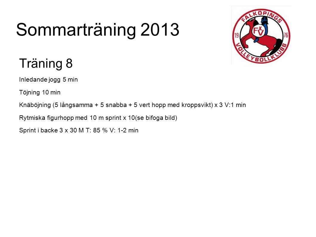 Sommarträning 2013 Träning 8 Inledande jogg 5 min Töjning 10 min