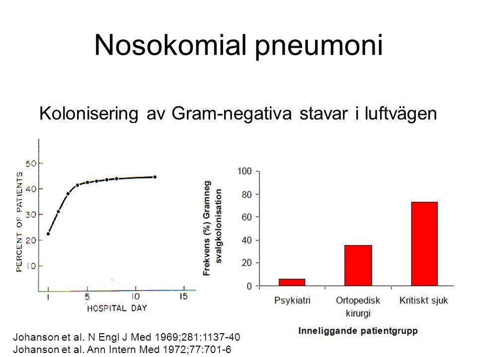 Kolonisering av Gram-negativa stavar i luftvägen