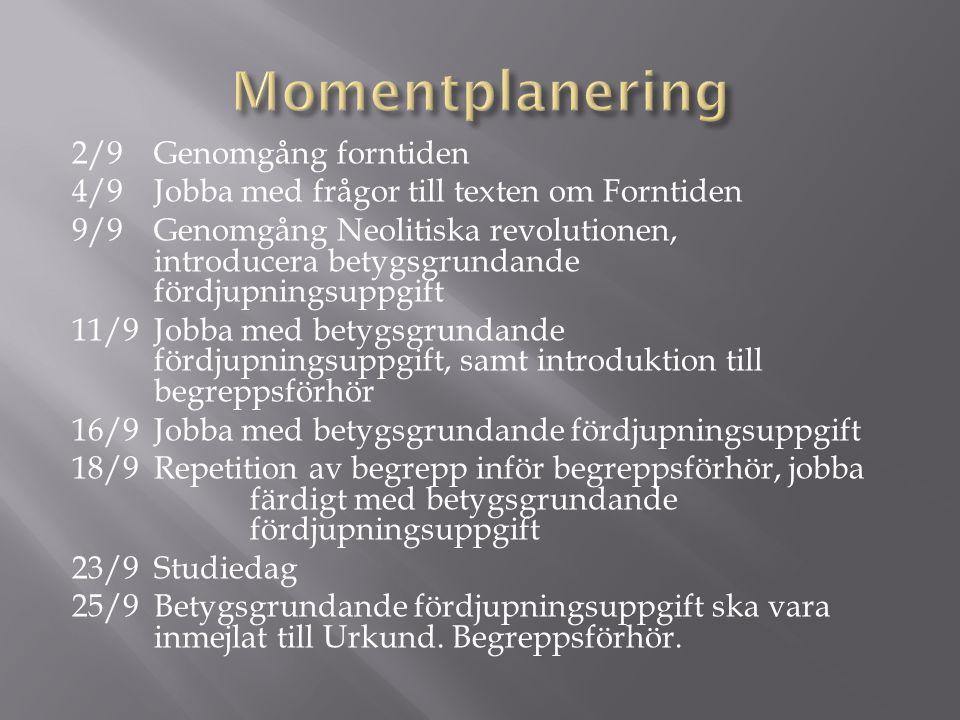 Momentplanering