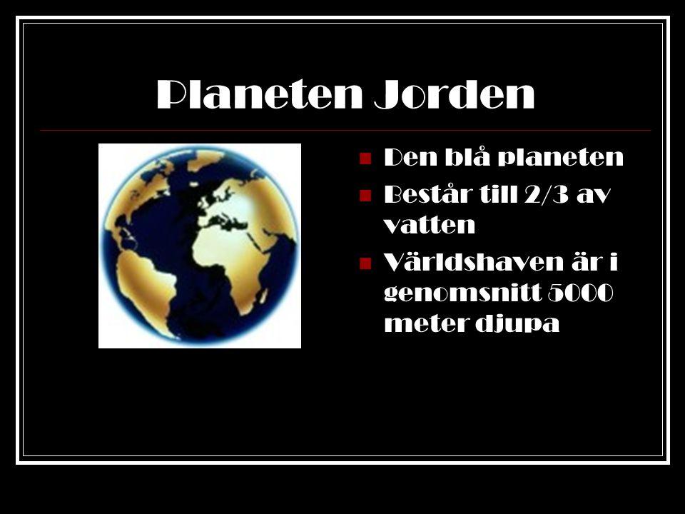 Planeten Jorden Den blå planeten Består till 2/3 av vatten