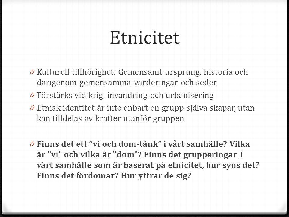 Etnicitet Kulturell tillhörighet. Gemensamt ursprung, historia och därigenom gemensamma värderingar och seder.