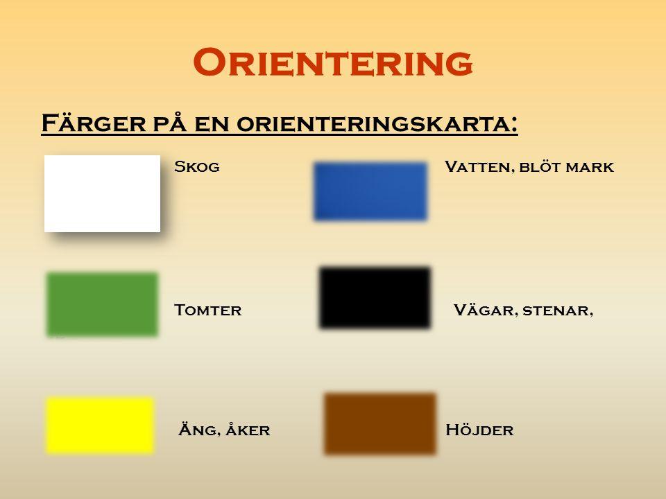 Orientering Skog Vatten, blöt mark Färger på en orienteringskarta: