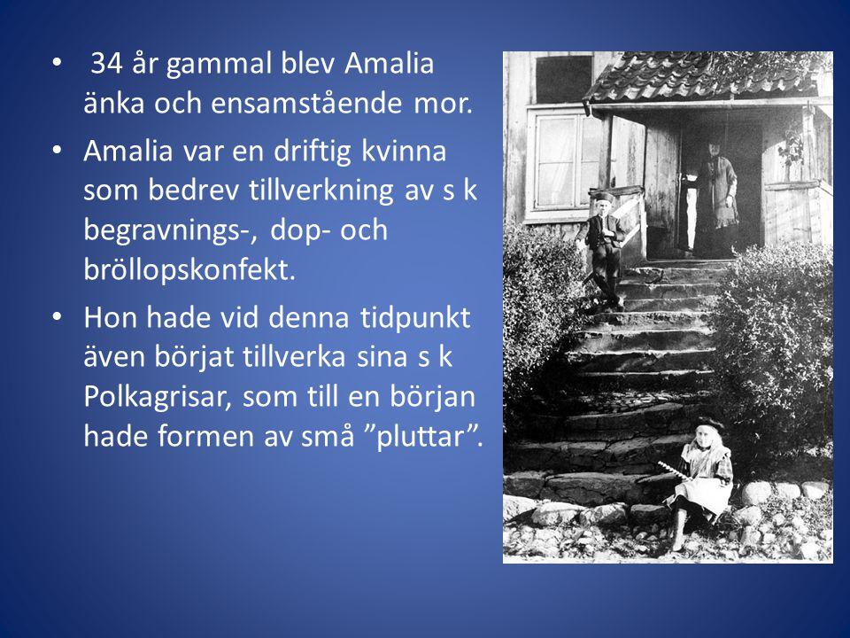 34 år gammal blev Amalia änka och ensamstående mor.