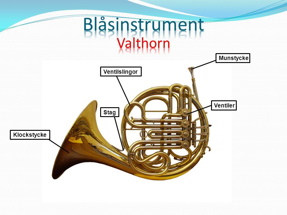 Blåsinstrument Valthorn Munstycke Ventilslingor Ventiler Stag