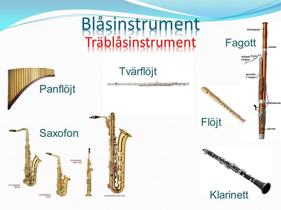 Blåsinstrument Träblåsinstrument Fagott Tvärflöjt Panflöjt Flöjt