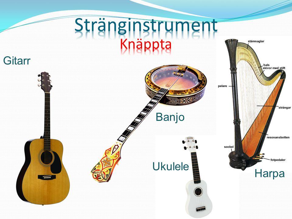 Stränginstrument Knäppta Gitarr Banjo Ukulele Harpa