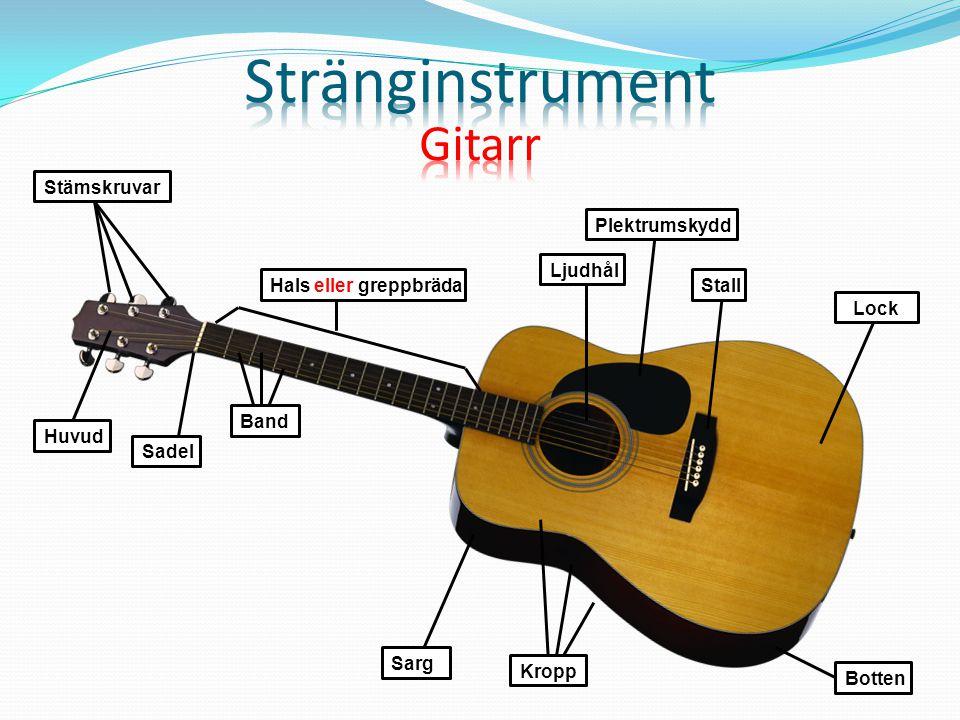 Stränginstrument Gitarr Stämskruvar Plektrumskydd Ljudhål