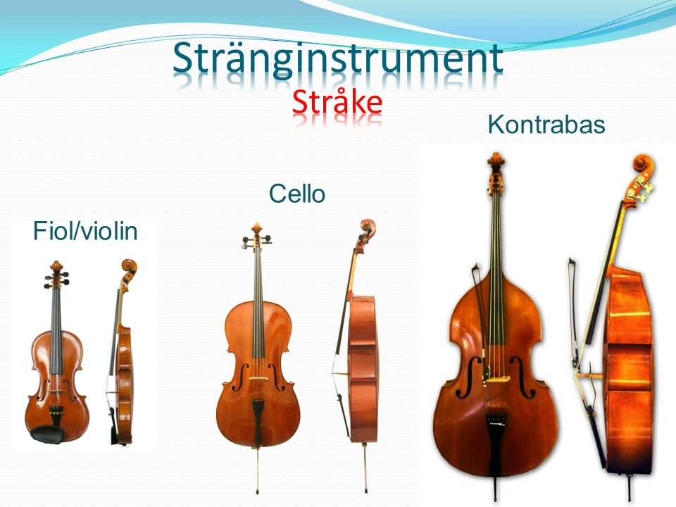 Stränginstrument Stråke Kontrabas Cello Fiol/violin