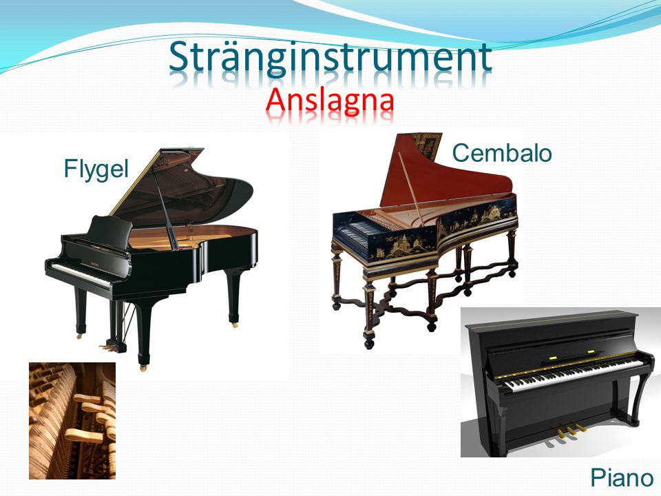 Stränginstrument Anslagna Cembalo Flygel Piano