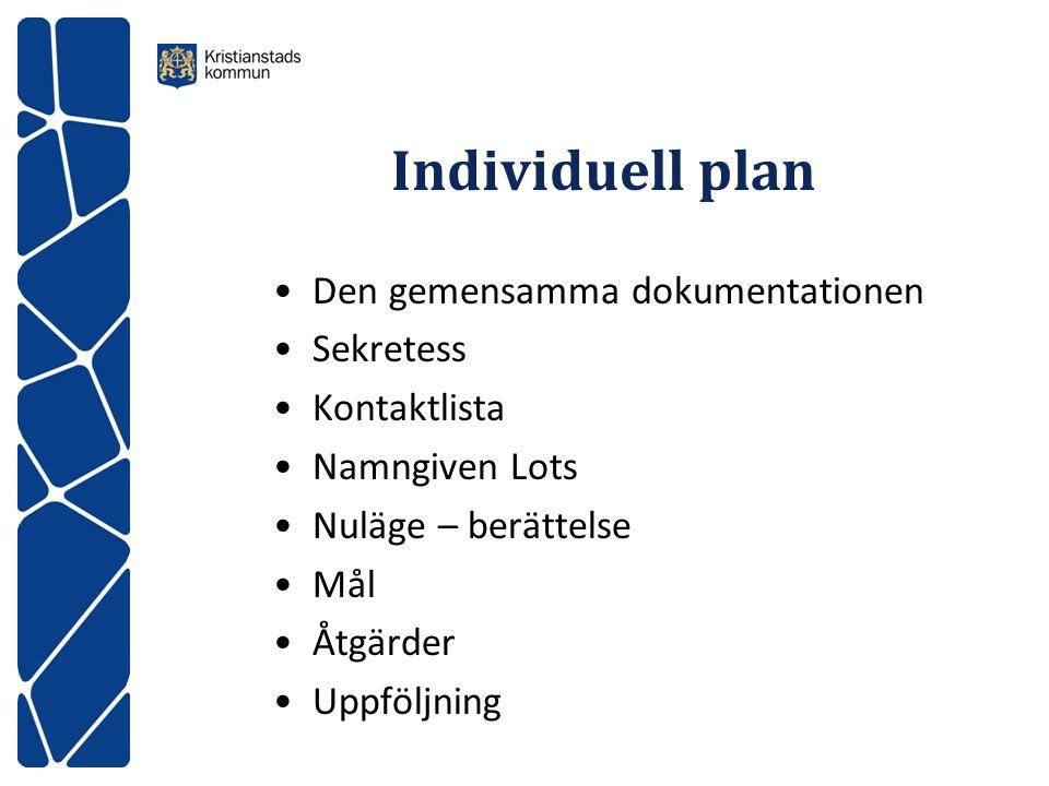 Individuell plan Den gemensamma dokumentationen Sekretess Kontaktlista