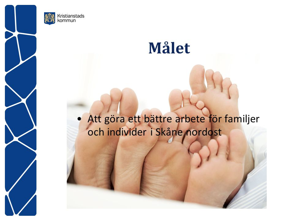 Målet Att göra ett bättre arbete för familjer och individer i Skåne nordost.