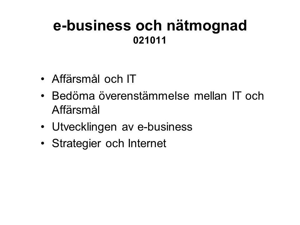 e-business och nätmognad 021011