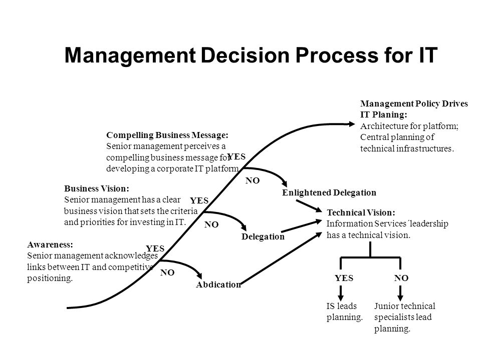 Management Decision Process for IT
