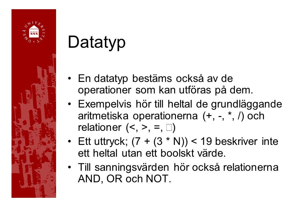 Datatyp En datatyp bestäms också av de operationer som kan utföras på dem.