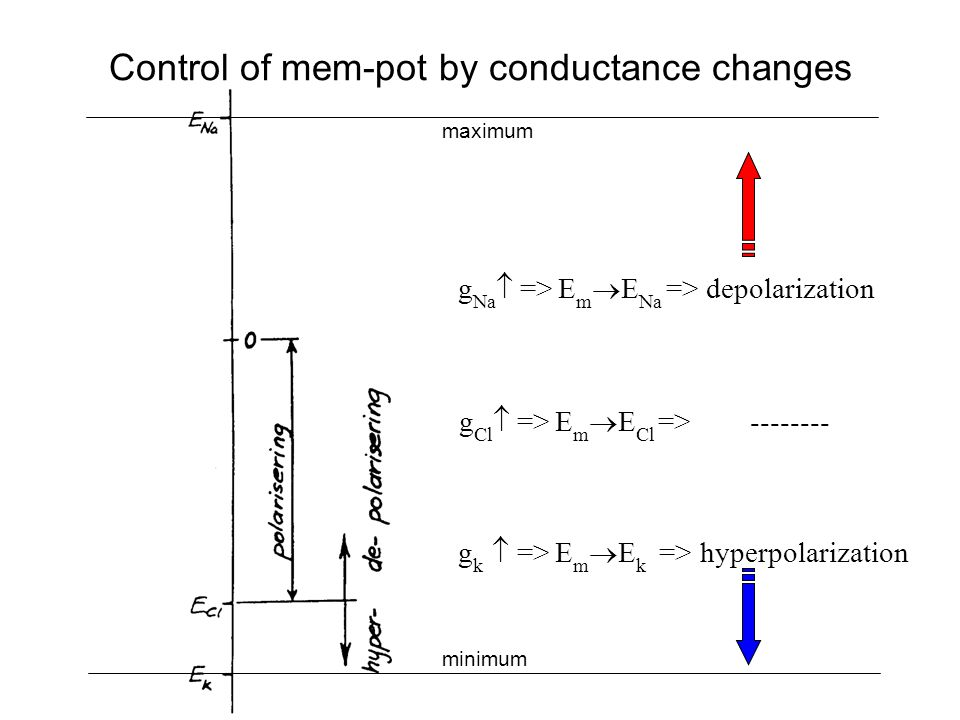 Control of mem-pot by conductance changes