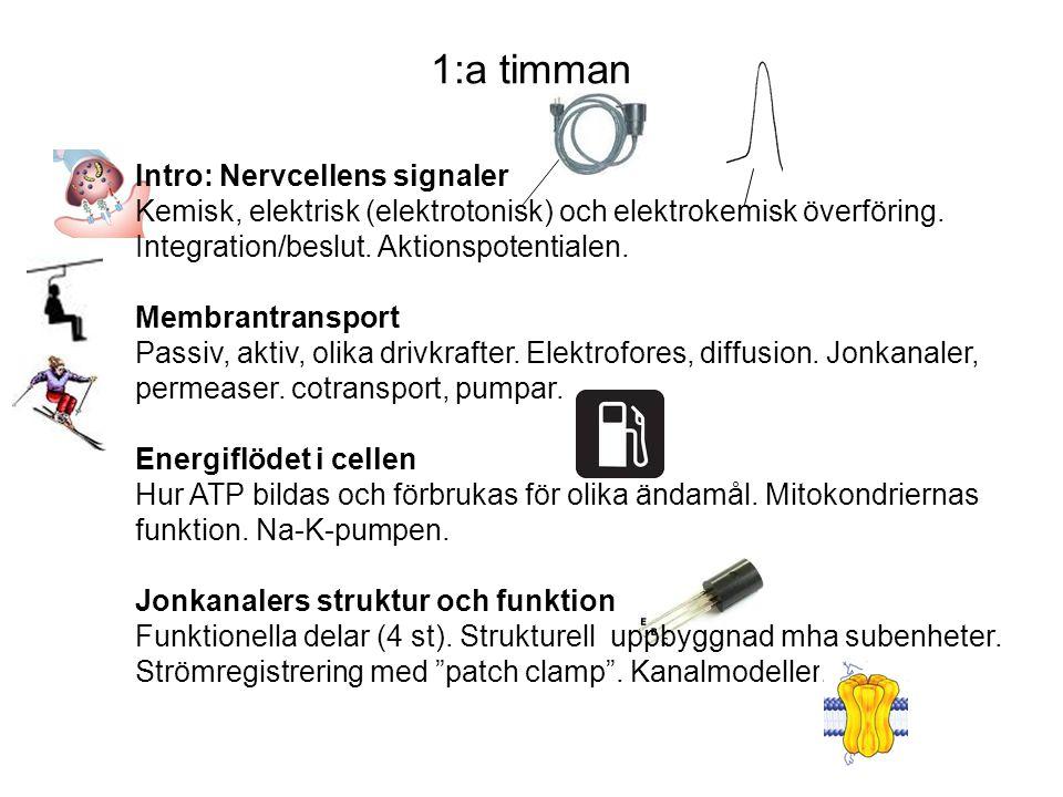 1:a timman Intro: Nervcellens signaler