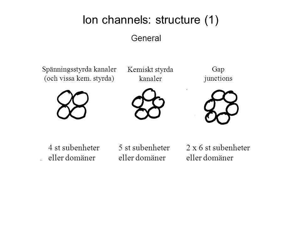 Ion channels: structure (1)