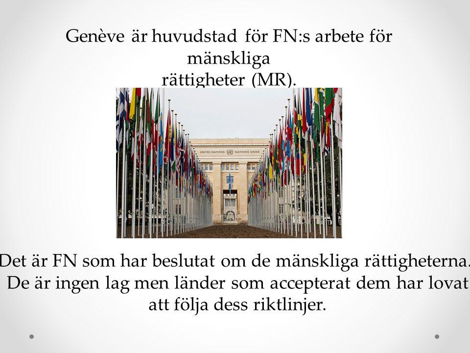 Genève är huvudstad för FN:s arbete för mänskliga rättigheter (MR).