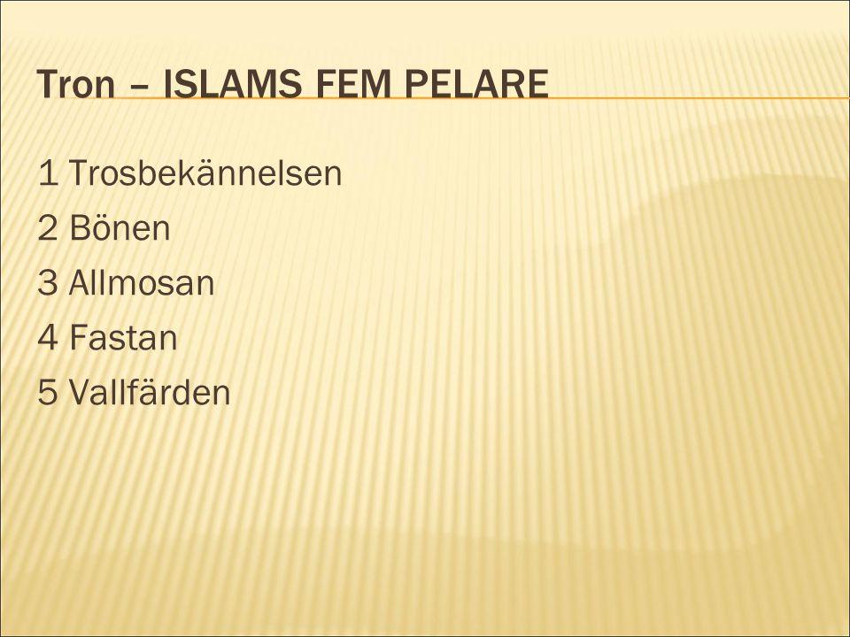 Tron – ISLAMS FEM PELARE