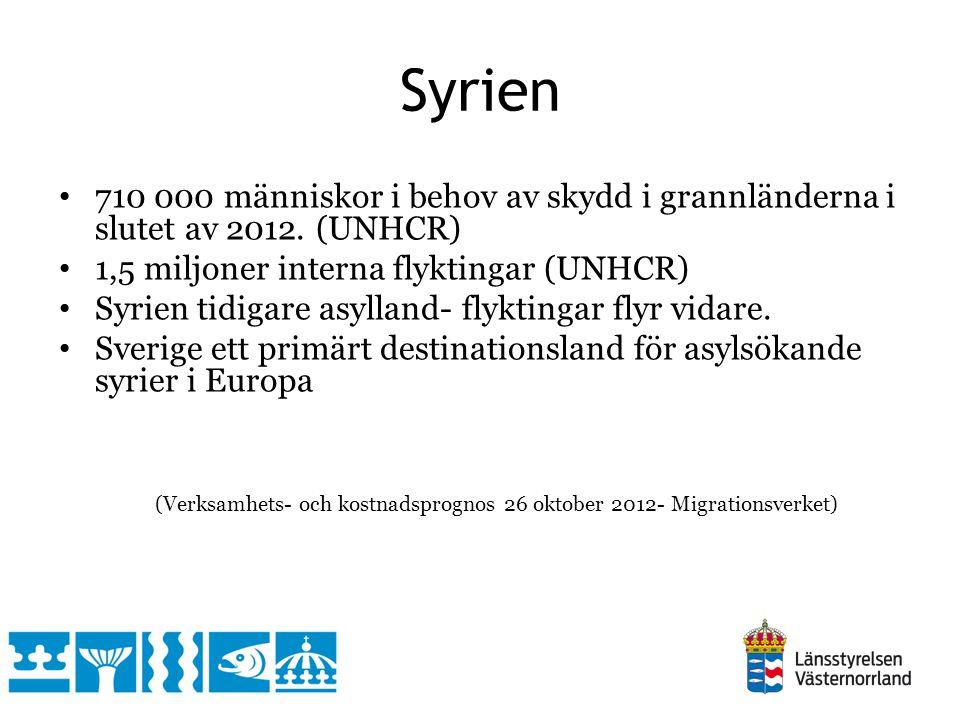 Syrien 710 000 människor i behov av skydd i grannländerna i slutet av 2012. (UNHCR) 1,5 miljoner interna flyktingar (UNHCR)