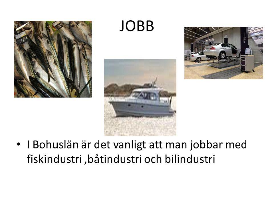 JOBB I Bohuslän är det vanligt att man jobbar med fiskindustri ,båtindustri och bilindustri