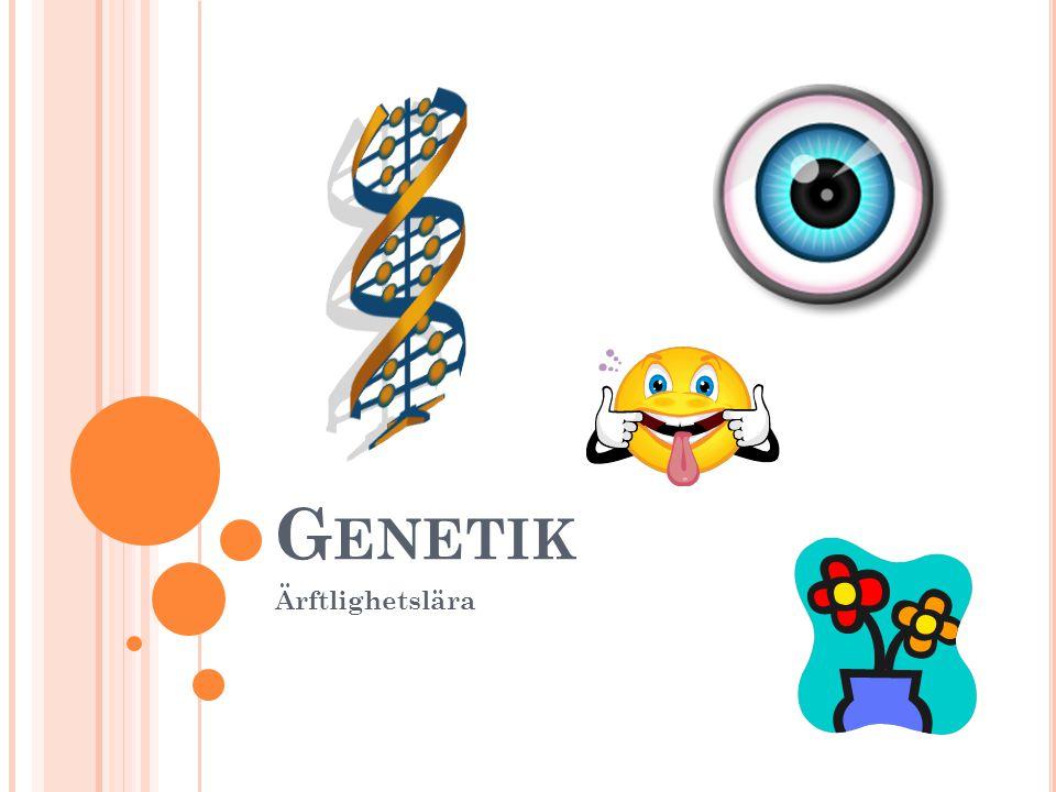 Genetik Ärftlighetslära