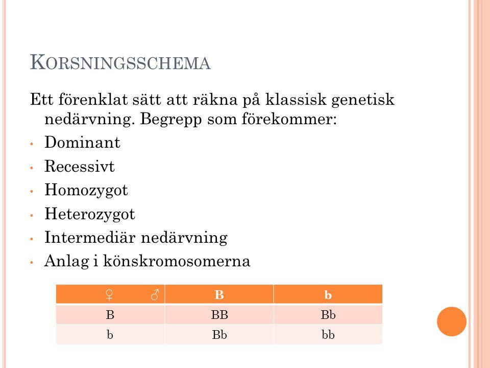 Korsningsschema Ett förenklat sätt att räkna på klassisk genetisk nedärvning. Begrepp som förekommer: