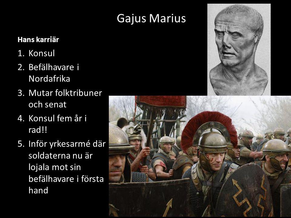 Gajus Marius Konsul Befälhavare i Nordafrika
