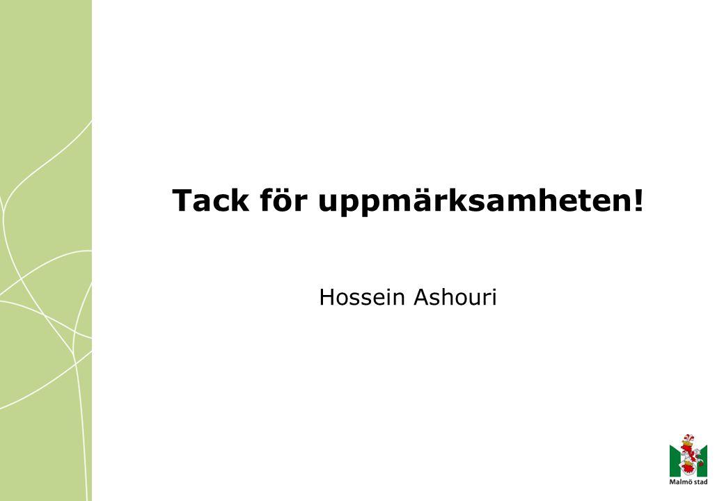 Tack för uppmärksamheten! Hossein Ashouri