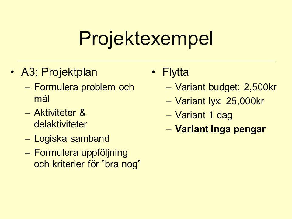 Projektexempel A3: Projektplan Flytta Formulera problem och mål