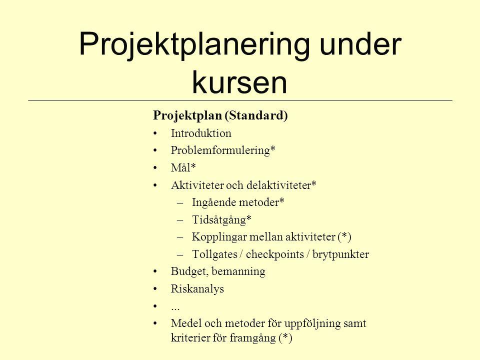 Projektplanering under kursen