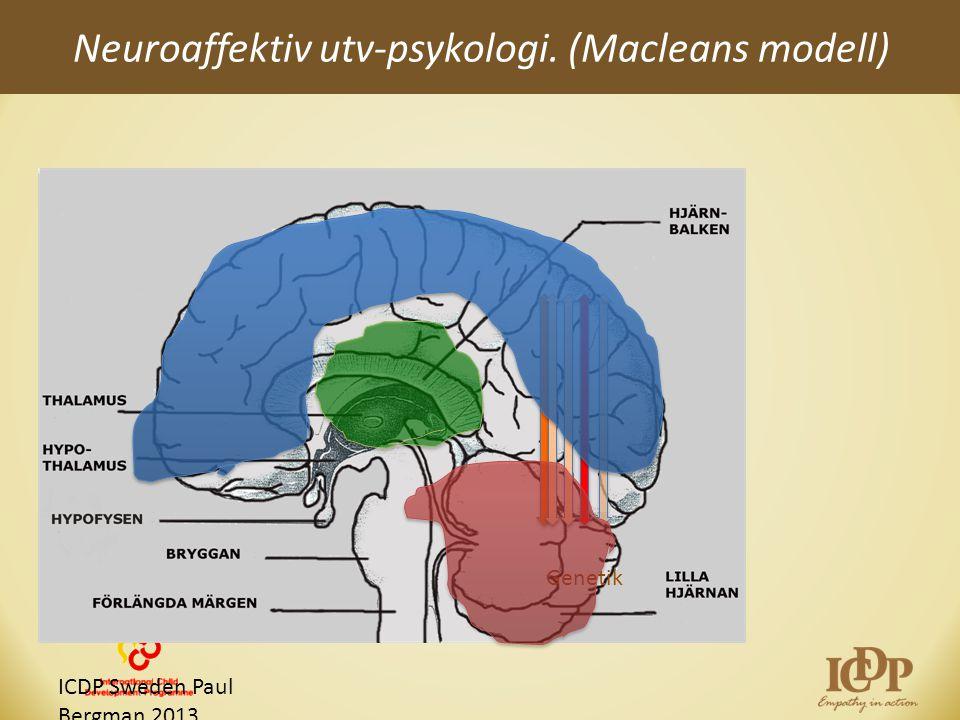 Neuroaffektiv utv-psykologi. (Macleans modell)