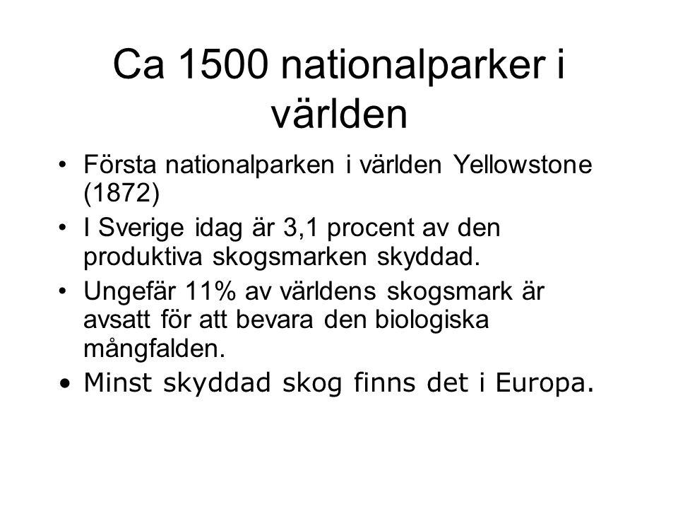 Ca 1500 nationalparker i världen