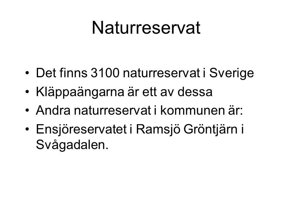 Naturreservat Det finns 3100 naturreservat i Sverige