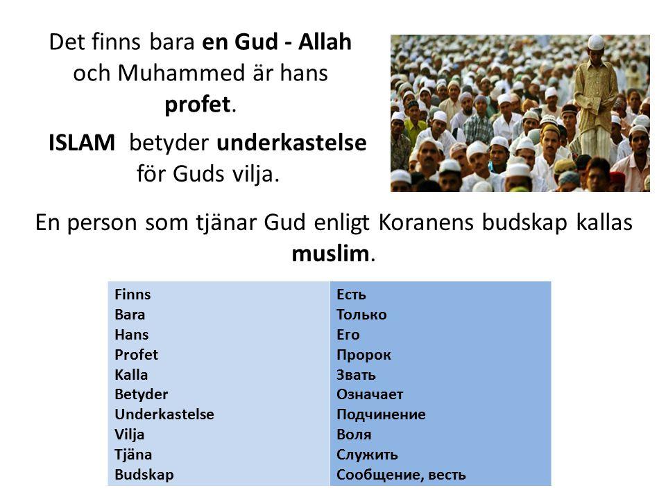Det finns bara en Gud - Allah och Muhammed är hans profet.