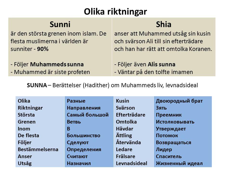 Olika riktningar Sunni Shia
