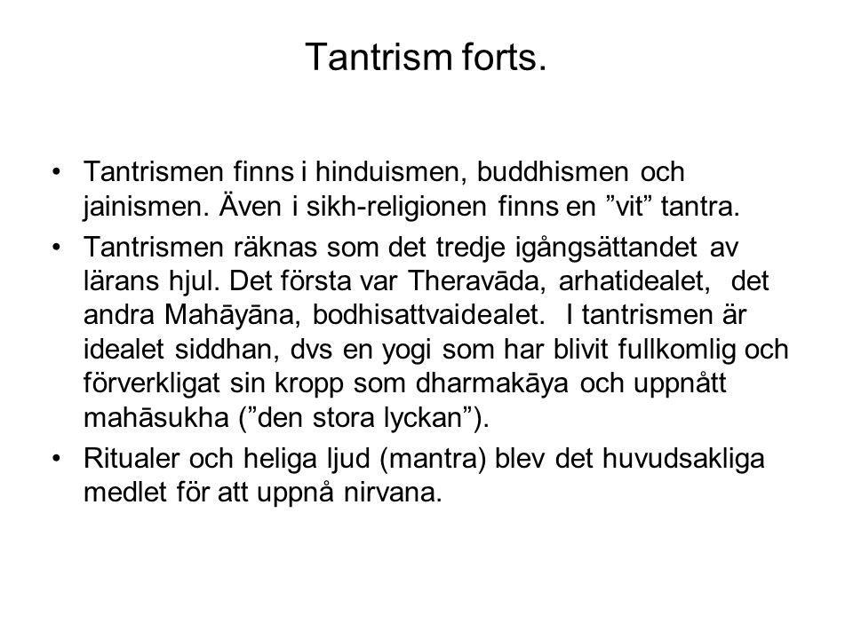 Tantrism forts. Tantrismen finns i hinduismen, buddhismen och jainismen. Även i sikh-religionen finns en vit tantra.