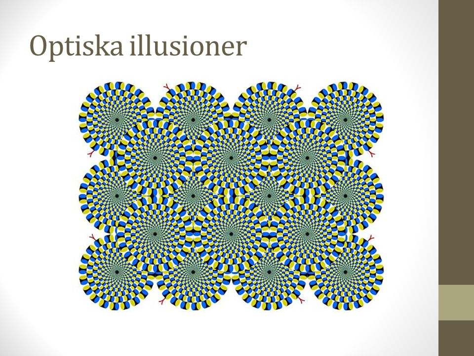 Optiska illusioner