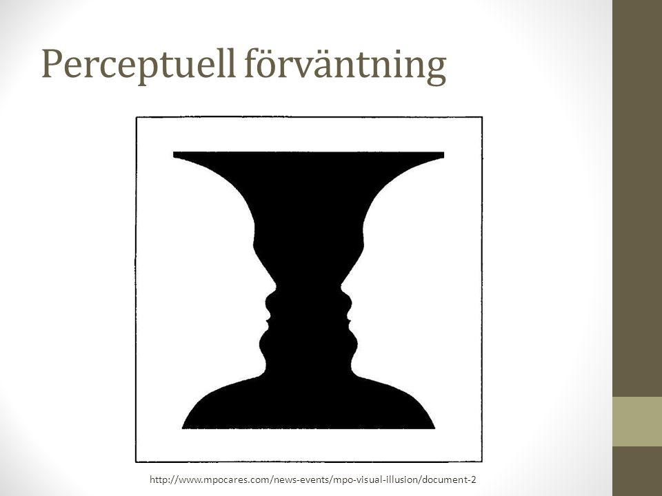 Perceptuell förväntning