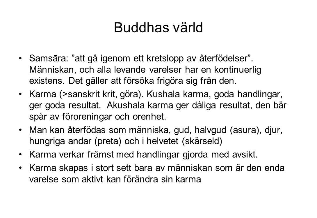Buddhas värld