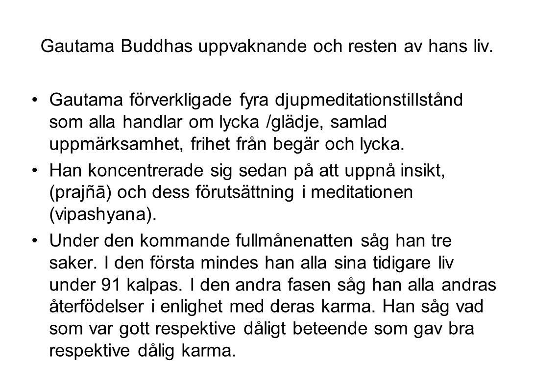Gautama Buddhas uppvaknande och resten av hans liv.